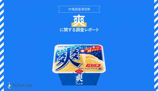 【商品別市場調査代9弾】爽に関する調査レポート